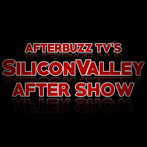 Silicon Valley After Show